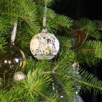 Weihnachtsaktion – Ilebiber unter'm Weihnachtsbaum